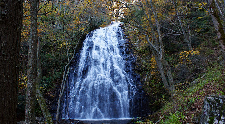 four reasons crabtree falls